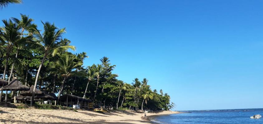 3 Praias que você precisa conhecer em Praia do Forte
