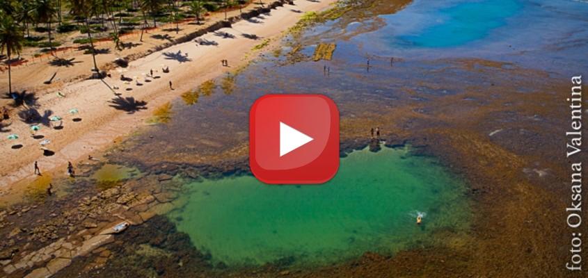 6 vídeos imperdíveis no YouTube sobre a Praia do Forte