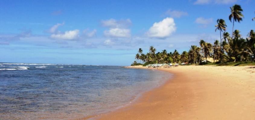 Conheça as vantagens do contato com a natureza em Praia do Forte