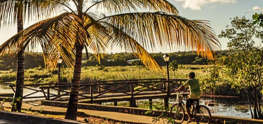 Parque Klaus Peters da Praia do Forte completa 6 anos no próximo sábado (21)