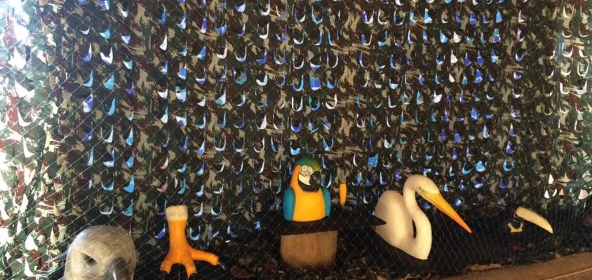Parque Klaus Peters fará exposição sensorial na 17ª Semana Nacional de Museus no Projeto Tamar