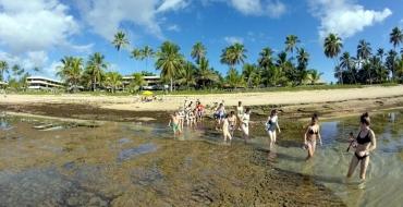 Praias, hotéis e tartarugas atraem famílias de paulistanos para Bahia