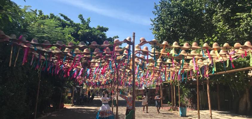 Saiba o que fazer para comemorar o São João da melhor forma em Praia do Forte
