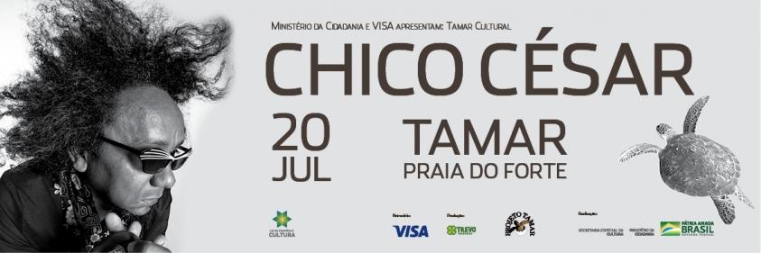 Show de Chico César comemora repovoamento de praias da Bahia pela tartaruga-oliva